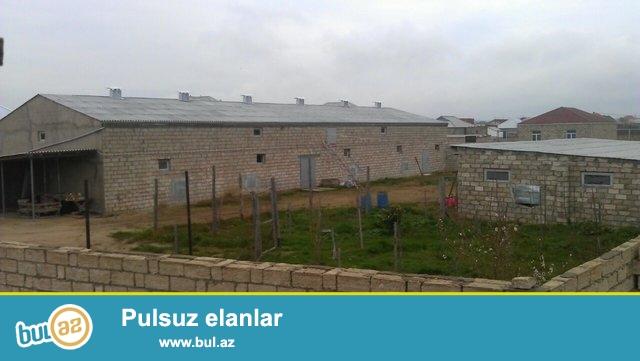 Yer: Savxoz Ramana<br /> Ünvan: Sabunçu rayonu, Səməd şadlıq evinin yaxınlığı<br /> Sahəsi: 50m x 40m = 2000m²<br /> Əsas tikinti: 35m x 12m = 420m², üstündə isə 420m² mansard...