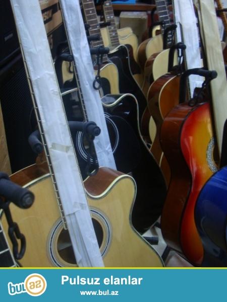 Gitara Muellimlerinin secimi olan Silverio, Masterwork ve  IST firmali gitaralar yalniz H...