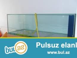 234litirlik akvarium satıram teze ölçüleri uzunluqu 124sm hündürlüyü 45sm eni 42sm 10mmlik şüşeden dir akvarium sade qapaqsız veziyyetde qiymeti 100azn ...