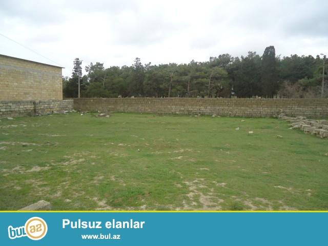 DİLQƏM Sabunçu rayonu, Zabrat 2 qəsəbəsi Zərkənd ərazisində 4,5 sot torpaq sahəsi təcili satılır...