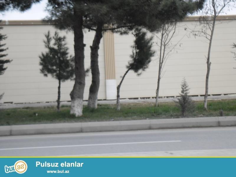 ) Abu-Arenanın yanında-Genclikde-1.7 hektar-31 mln manat-kupçalı torpaq