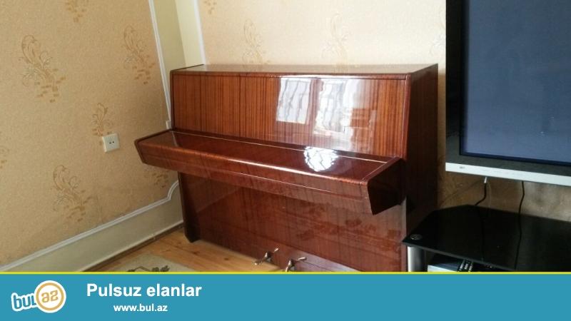 petrof pianino satiram dasinmasi və köklənməsi qiymətə daxildir.