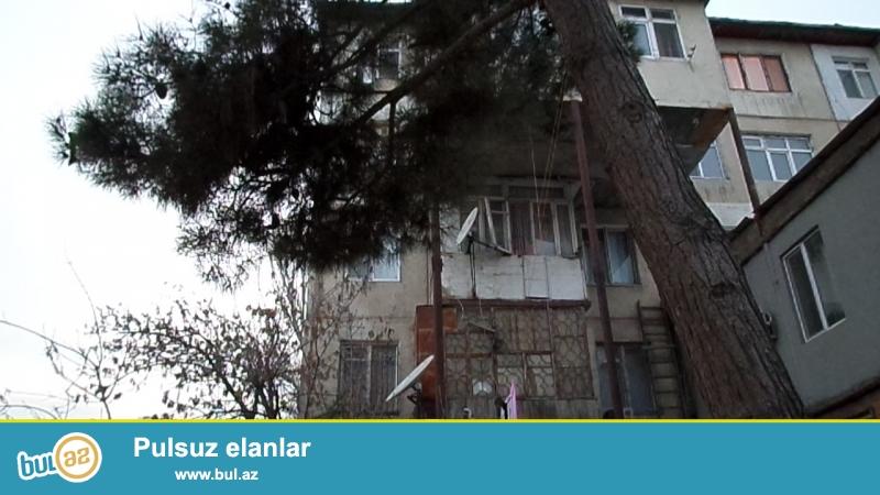 1-ci mikrarayonda məktəbə parka metroya yaxın 5 mərtəbəli binada 2 otaqlı orta təmirli orta mənzil satılır.
