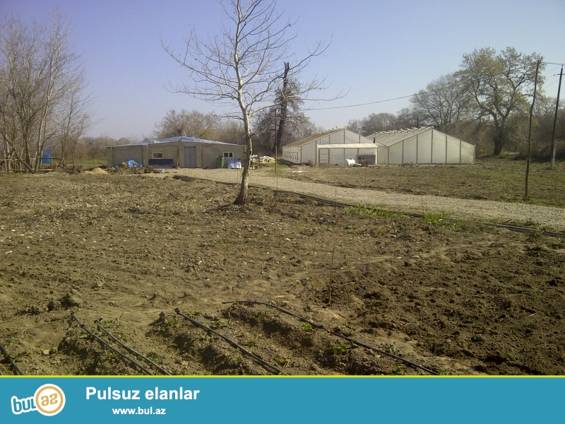 Xaçmaz-Xudat yolu. <br /> Torpaq sahəsi 1 hektar 10 sotdur...
