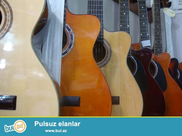 Gitara Muellimlerinin secimi olan Silverio, Masterwork ve Dr...