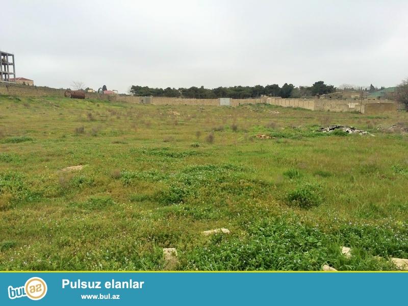 Очень Срочно! Продается  полностью приватизированный земельный участок расположенный в посёлке Мардакан напротив ресторана *Гоша -Гала*...