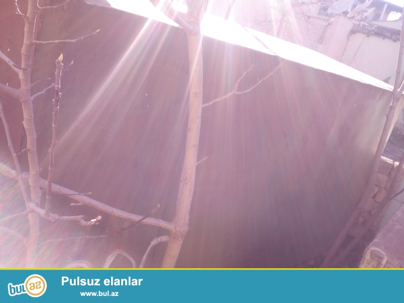 Demir Qaraj Satilir Bineqedi Rayonu M.Resulzade Qesebesinde Qiymet 3500Azn Asagi Olar Diqqet Qaraj Basqa Unvana Dasina Bilir...