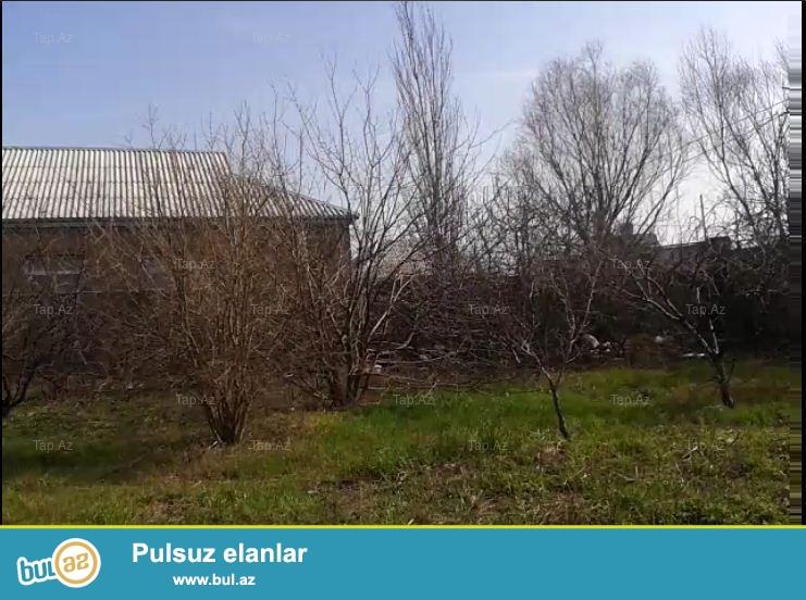 Suraxanı rayonu.Zığ qəsəbəsində 8 sot torpaq sahəsi satılır...