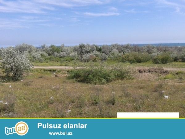 Siyəzən rayonunun Zarat qəsəbəsində dənizdən 200 m məsafədə yerləşən 203 sot kupçalı torpaq sahəsi satıram...