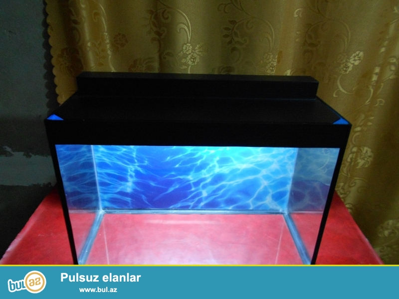 qapaqi ve arxa fonu var tek akvarium 35azn <br /> her bir avadanliqiyla dash ot cemi  60azn shekildeki kimi<br /> uzunu   60 sm <br /> hundurluyu 40 sm <br /> eni 25sm<br /> 051 878 85 61