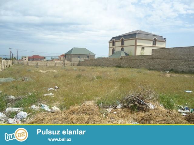VÜSAL Xəzər rayonu Dübəndi bğları, magistral yoldan 500 metr, dənizdən 300 met məsafədə 10 sot torpaq sahəsi satılır...