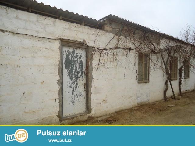 MÜBARİZ   Sabunçu rayonu, Maştağa qəsəbəsi, Kirov kruqu, 128 saylı orta məktəbin yaxınlığında, 1...
