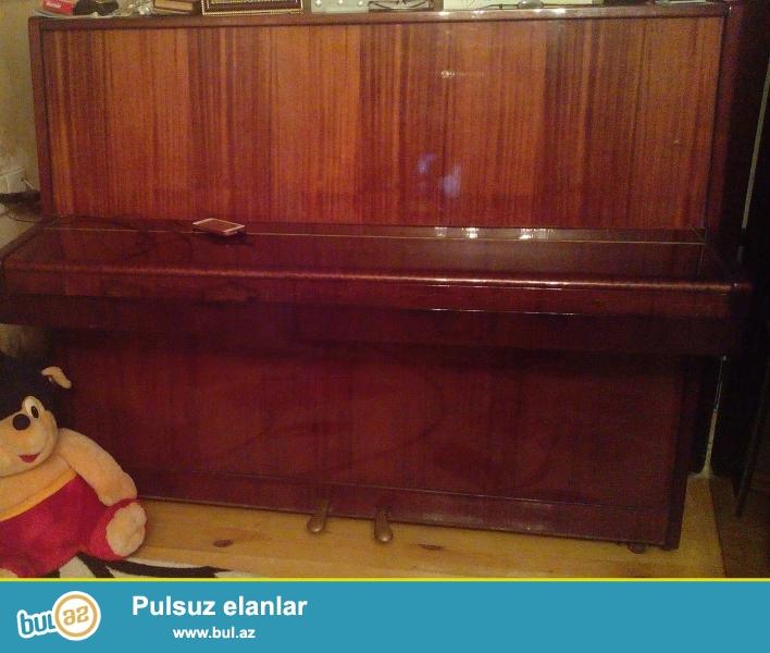 ela calinmna gucune malikdir.Belarus pianosudu,qehveyi rengdedi...