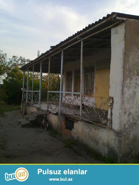 Vişnevka 1 (pajarninin yani)bağ massivinde bir hasar daxilində iki pay, hər biri 11 sot -cemi 22 sot olan bağ satılır, həyətdə baxımsız ev olduğuna göre torpaq qiymətinə satılır...