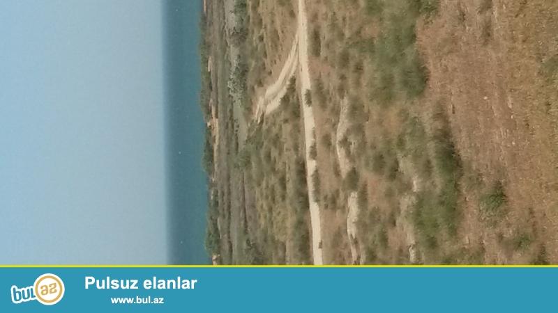 Baki Quba yolunun 48 ci klometriliyinda yawma baqlarinda tacili alti sot torpaq satiram panaramma daniza baxir alti sotu 3500azn qaz iwiq su var