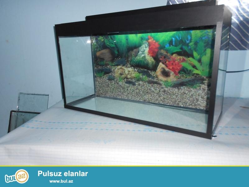 Akvariumlar satilir hazir olculerde akvariumlarimiz var<br /> 5 azn den bashlayan qiymetlerle <br /> avadanliqlarda var ve muxtelif nov yerli artim baliqlar <br /> 051 878 85 61