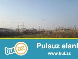 AMIL m Sabunçu Rayonu Zabrat 2 qəsəbəsində Seyid marketin arxasında yoldan 50 mt məsafədə 1...
