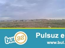 Təcili  Özüm satıram Fatmayı bağlarında 12 sot otrpaq sahəsi  sotu 2500 azn...