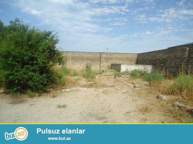 ALİM Sabunçu rayonu Maştağa qəsəbəsi 309 saylı orta məktəbin yaxınlığında,skorunun yanında 6 sot torpaq satılır...