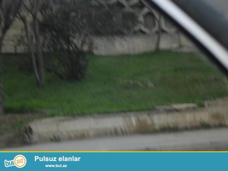Gənclikdə, Atatürk prospektində, yolun üstündə 5 sot təcili torpaq satılır...