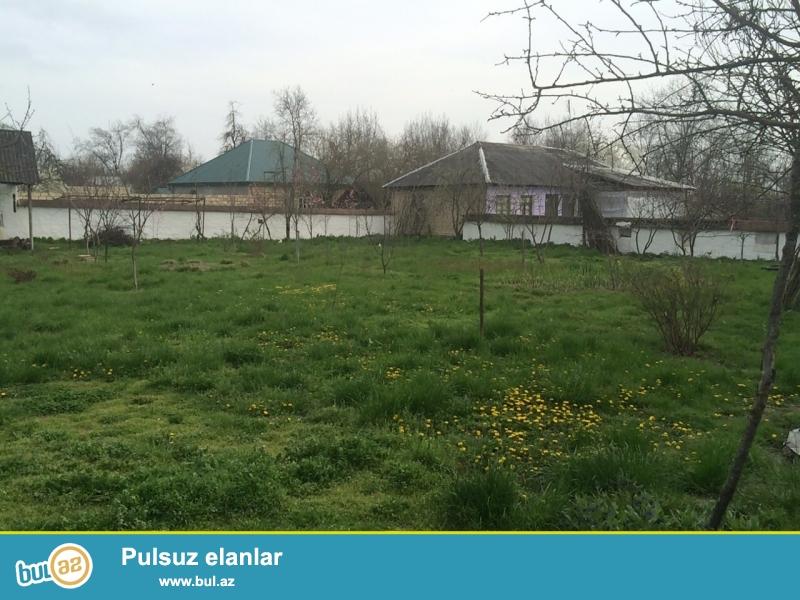 Qebele rayonunda 20 sot kupcali, ev tikmek ucun icazeli torpaq sahesi satilir...