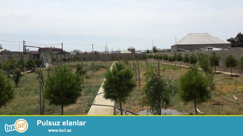 Yeni çəkilmiş Buzovna-Şüvəlan yolunun üstündə 21 sot ərazisi olan Bağ evi...