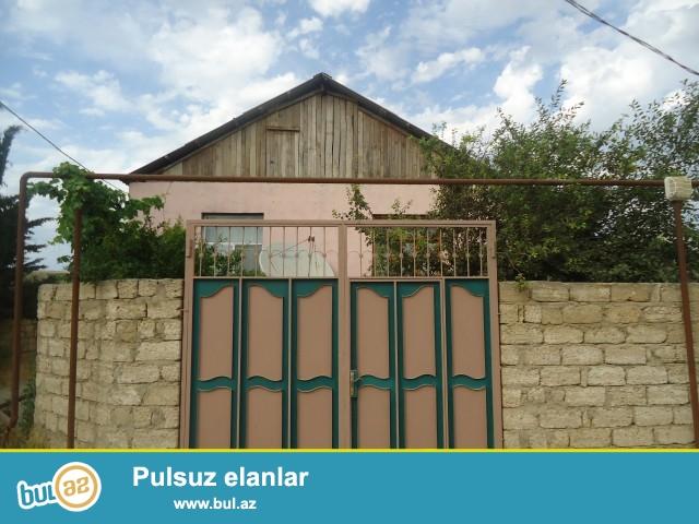 TƏLƏT Sabunçu rayonu, Ramana qəsəbəsi, əsas yoldan 100 metr məsafədə,yem dükanının yanında 1...