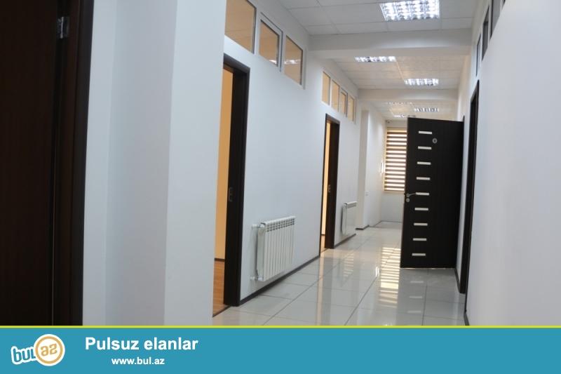 Nərmanov rayonu Nəcəf Nərimanov Küçəsi AKABE mebele yaxin 5/3 ümumi sahəsi 230 kv...