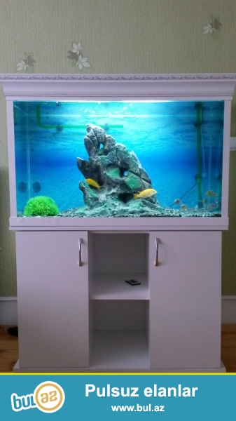 240 litrlik akvarium satilir