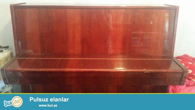 Belarus pianinosu alınanda 700 manata alınıb. 1990-cı ildən 5 il istifadədən sonra istifadə olunmayıb...