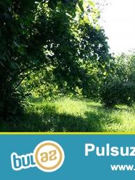 Təcili Balakən rayonunda dəmiryol stansiayasına yaxın şəhər bölgüsündə kupçalı  fındıq bağı satılır...