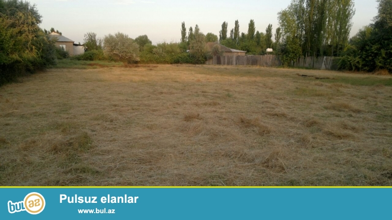 Sabirabad r-nu, Qalaqayın kəndi, Muğan prospekti 2, Sahəsi cəmi - 32 sot(16+16), qaz, işıq, su var...
