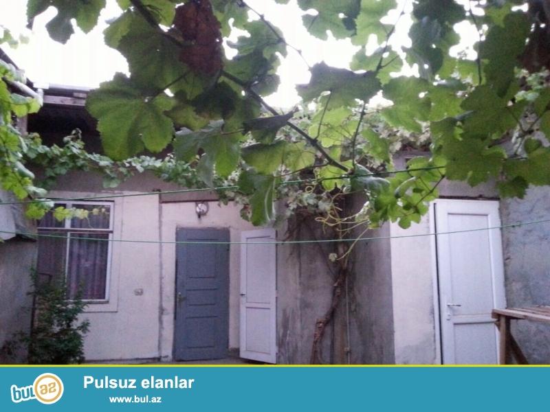 Salam. Kiraye bir otaqli xususi heyet evi. Sabunchu rayonu Sabunchu qesebesi 155 sayli mektebin yaninda...