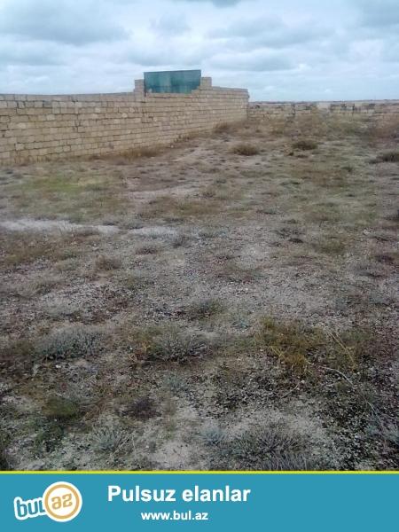 Novxanı-Qoradil kəndi ...saylı bağ sahəsi. 12 sot torpaq satılır...