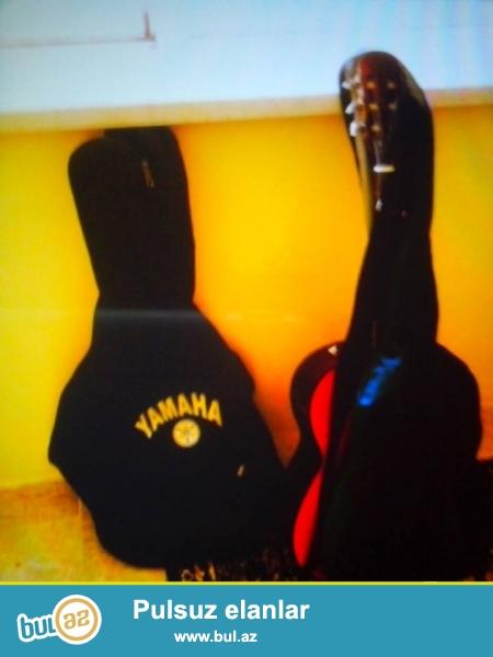 Gitara pearl puer firmasidi ustunde (goy ve qara) cxol var  kemeri var telleri yeni deyisilib xerc teleb etmir <br /> https://www...