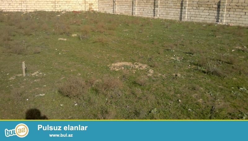 Təcili!!! Şüvəlanda Gülçülük Sovxozu küçesinde daş karxanası yaxınlığında 15 sot kupçada 12 sot torpaq sahəsi satılır...
