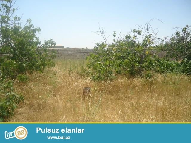 ÜMİD Sabunçu rayonu,Maştağa qəsəbəsi Tavaylıq deyilən ərazidə 1 km məsafədə 4 sot torpaq sahəsi satılır...