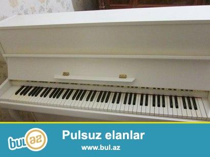 Ağ rengde pianinolar - yeni ve ideal veziyyetde, orijinal mexanika ile en serfeli qiymetlerle teklif olunur.