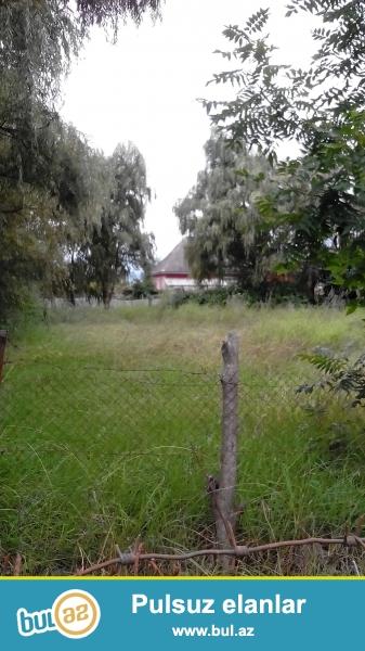 Astara rayununda 10 sot torpaq sahəsi..4 bir yaninda evlər tikilib,işiğ,qaz,su xətti var...