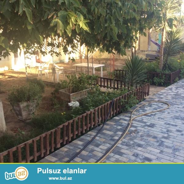 Mastaga-Bilgeh yolunun ustunde 20sot yawilliq,agaclari olan heyet evi satilir...