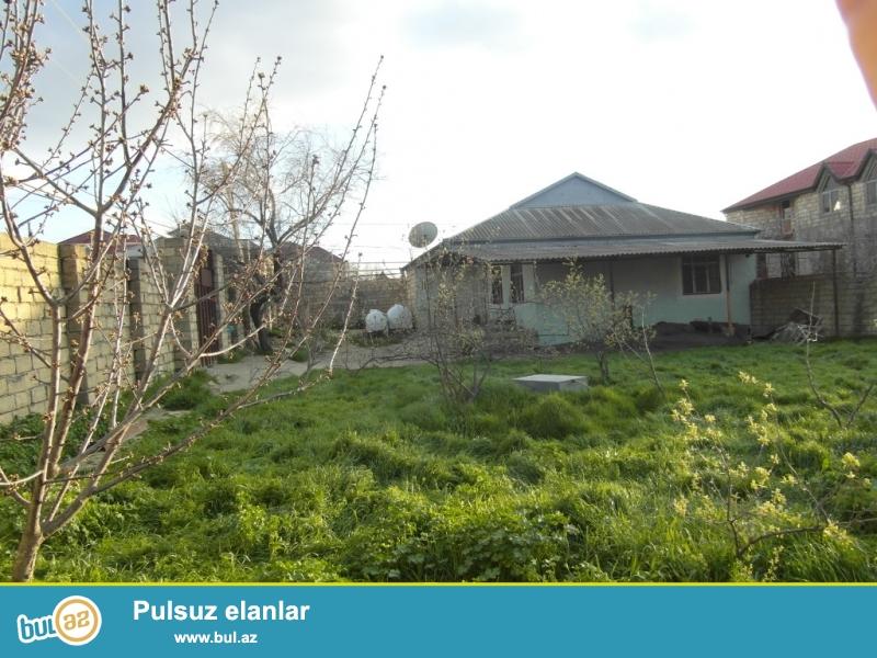 Masazırda 3 otaqlı həyət evi 8 sotun içində kirayə verilir...