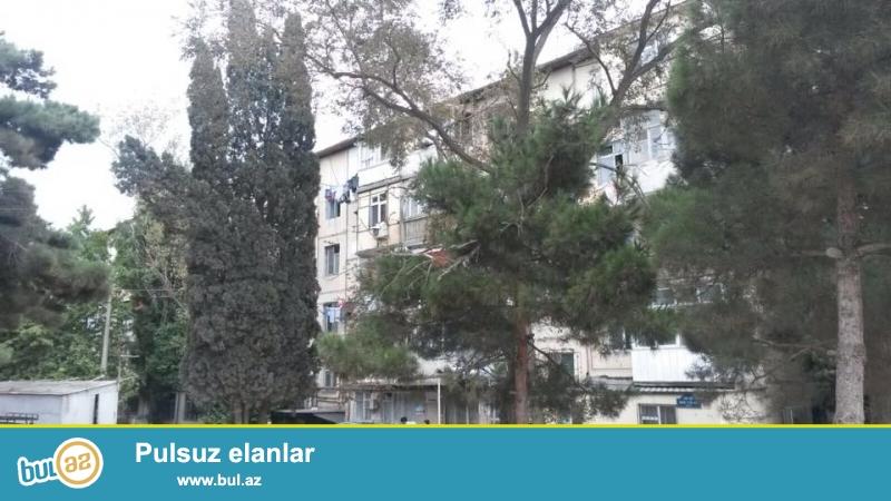 5 мкр, рядом с м. Аджеми, французский проект, средний блок, 5/2, хороший ремонт, окна PVC, чистая, уютная квартира...