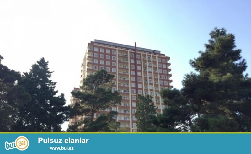 Səbail rayonu, Qış bulvarının yanında,15 sotda 1 blok-12 mərtəbəyə tam paket sənəd, 1000 kvm binanın oturacağı satılır...