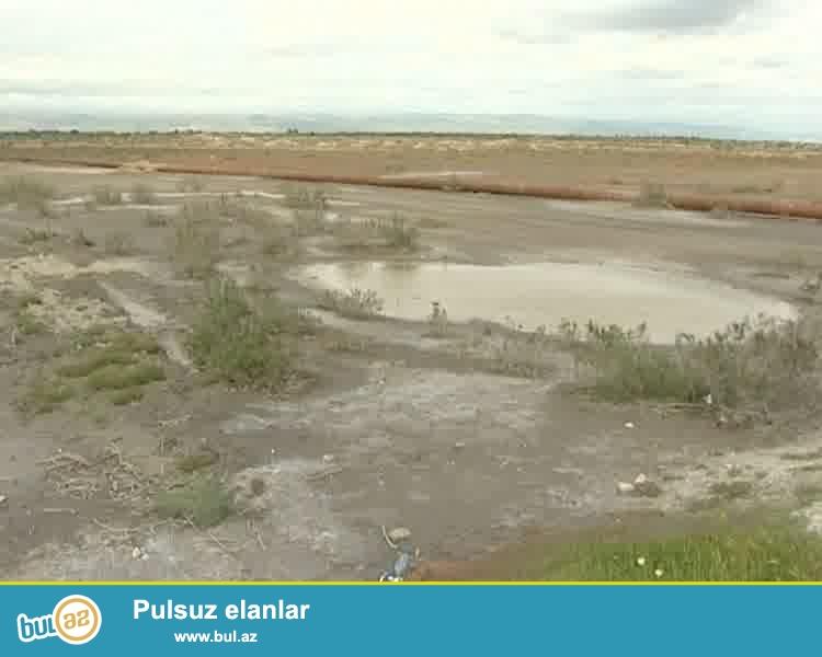 Qalada,28 hektar 99 illik çıxarışlı icarə sənədi ilə torpaq satılır...