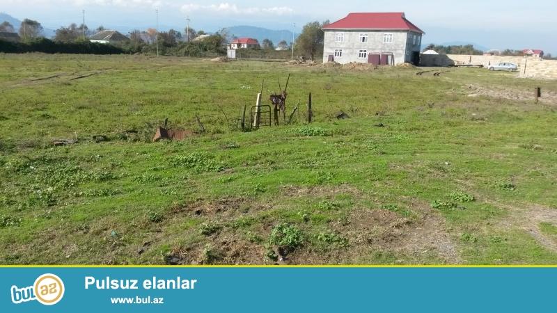 Astara rayonunda dənizin 20-30 metr yaxınlıqinda həyətyanı torpaq satılır...