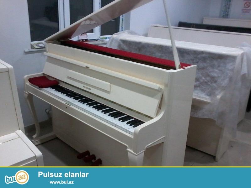 Esklyuziv model Olan Weinbach Forte-Piano 1985 il buraxiliş Alman-Cexiya İstehsali Təzə ideal vəziyyətdə Catdirilma...
