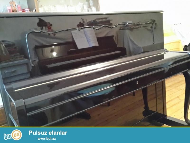 Belarus, Petrof ag ve geyfeyi rengde, Geer, Weinbash, Renish pianinolari, ag royal, profesional tar satilir...
