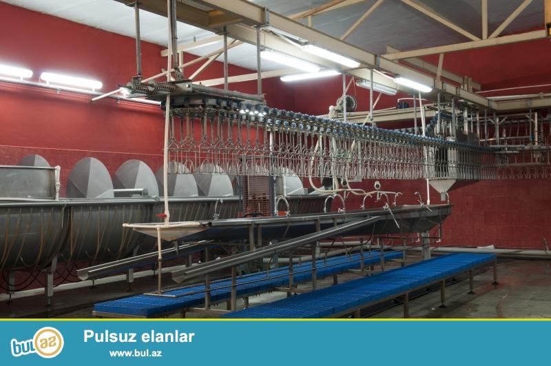 Azərbaycanda istehsal olunan broyler kəsim xətlərini sizlərə təqdim edirik...