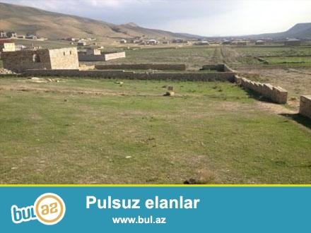 Tecili olaraq Qobu qesebesi yolunda yeni yawayiw sahesinde qazi suyu iwigi olan,ana yoldan 400- 500 metr arali 12 sot torpaq senetle satilir...