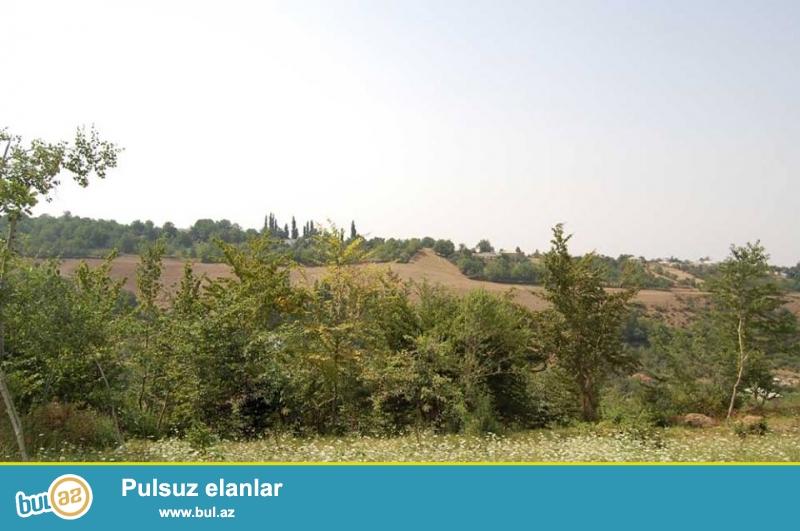 Qusarın Xurel kəndində 24 sot torpaq satılır. Bütün sənədləri qaydasındadır...